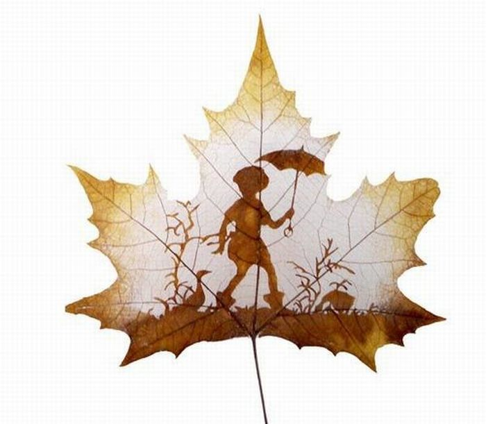 dessins-feuilles-arbres-04