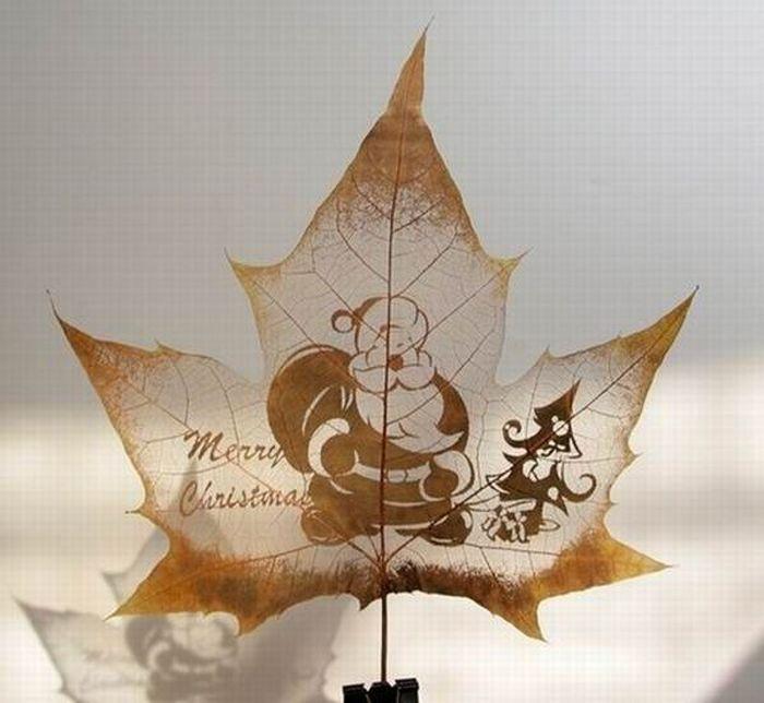 dessins-feuilles-arbres-09
