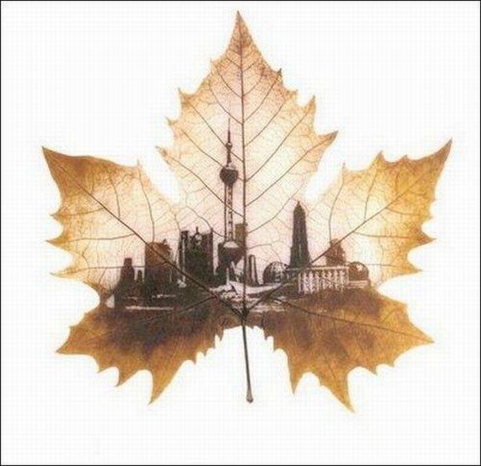 dessins-feuilles-arbres-10