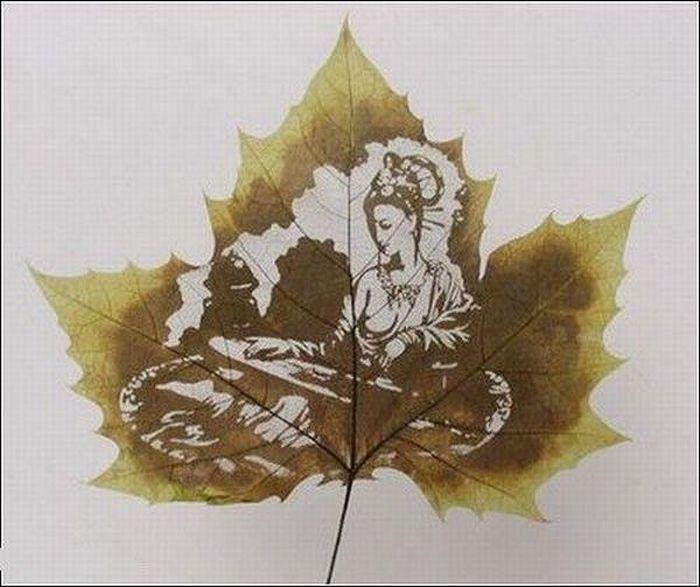 dessins-feuilles-arbres-14