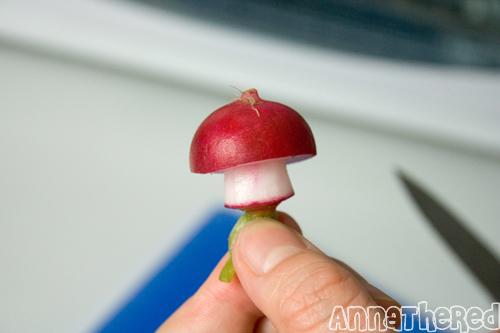 champignon-mario-radis-10