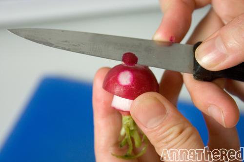 champignon-mario-radis-12