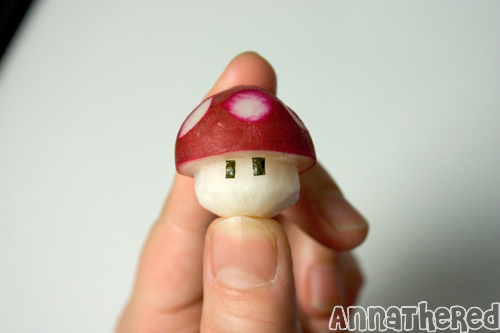 champignon-mario-radis-15