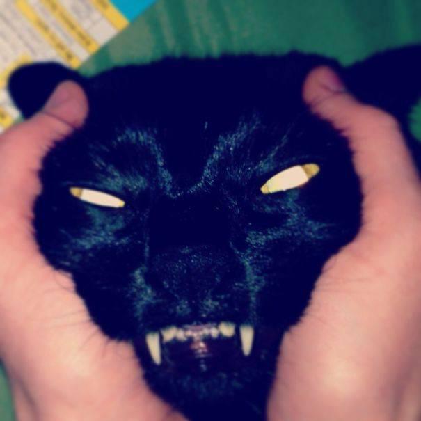 chats-diaboliques-09