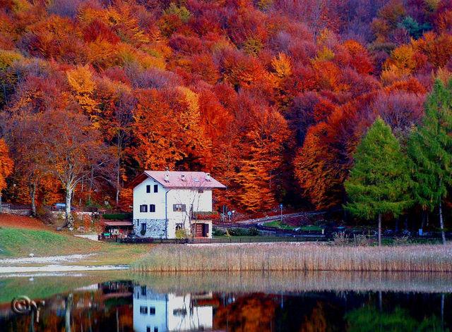 couleurs-automne-01