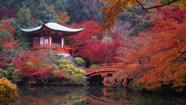 couleurs-automne-09