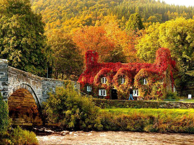 couleurs-automne-12