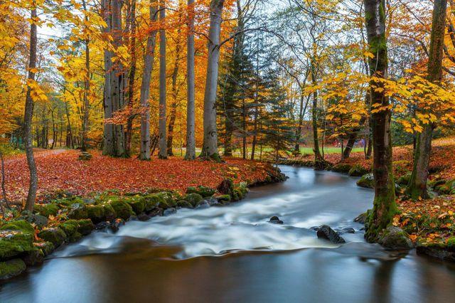 couleurs-automne-14