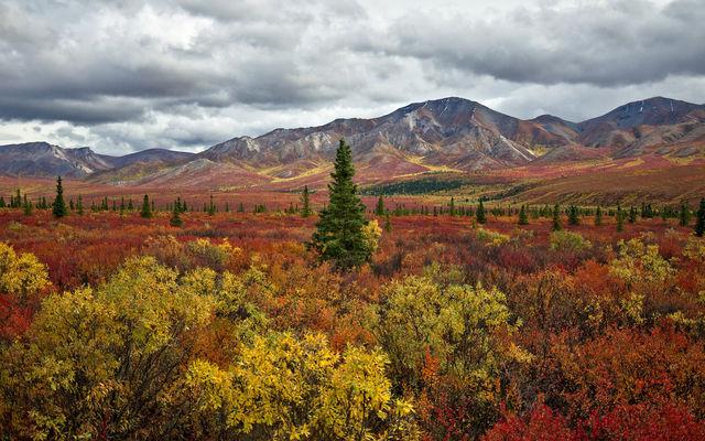 couleurs-automne-17