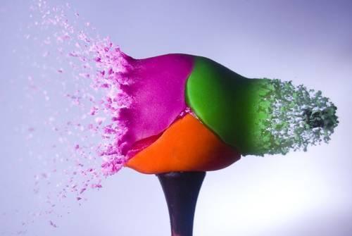 explosion-couleurs-10