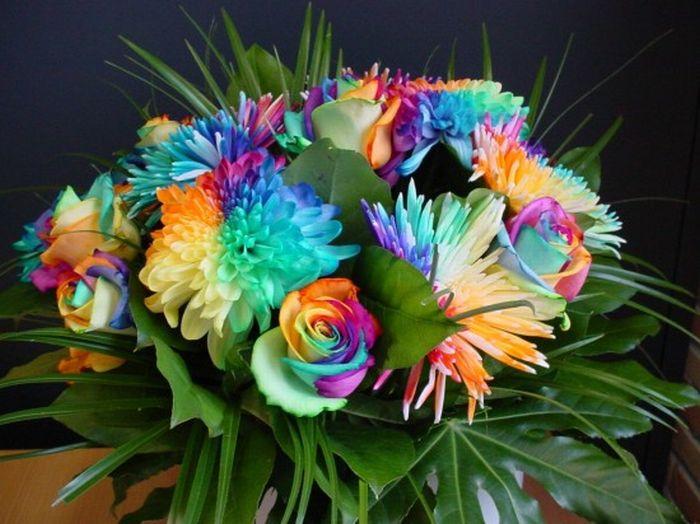 fleurs-colores-14