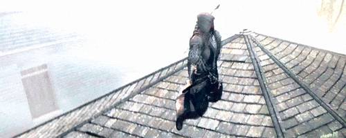 nouvel-oiseau-dans-assassins-creed