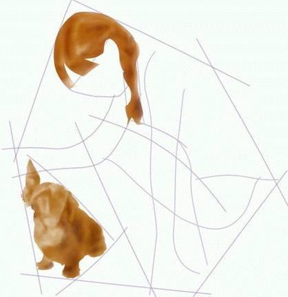 etapes-dun-dessin-realiste