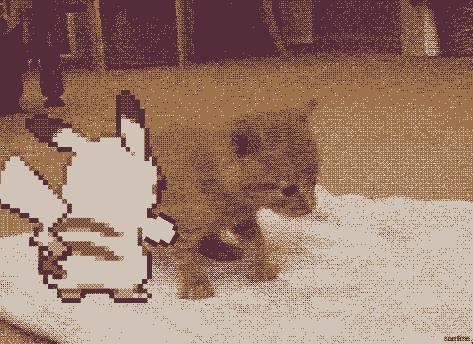 gif-pikachu-pousse-chat