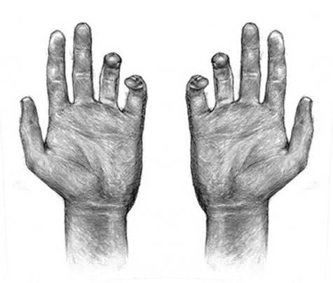 dessin-mains-peau-os