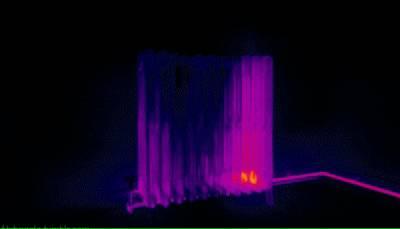 vision-thermique-chat-radiateur