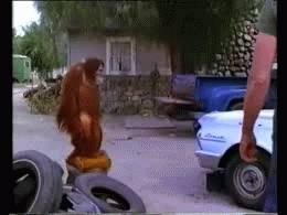 pan-singe