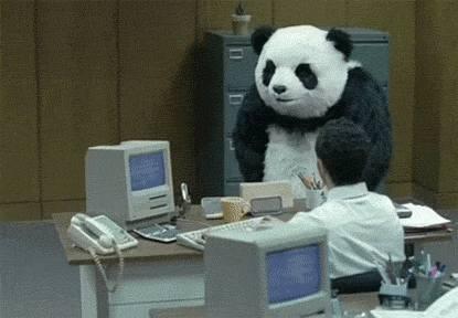 panda-casse-bureau