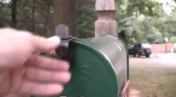 colis-chat-poste