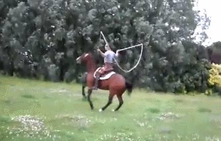 cheval-corde-sauter