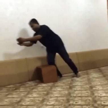 tentative-meurtre-guepard