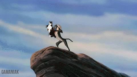 le-roi-chat