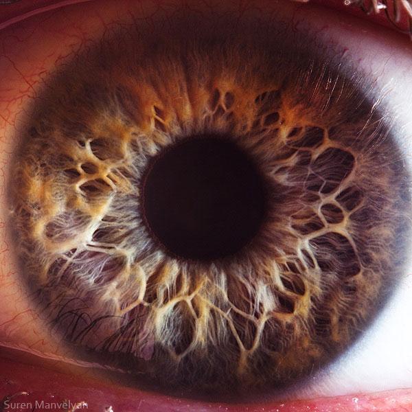 oeil-humain-gros-plan-09