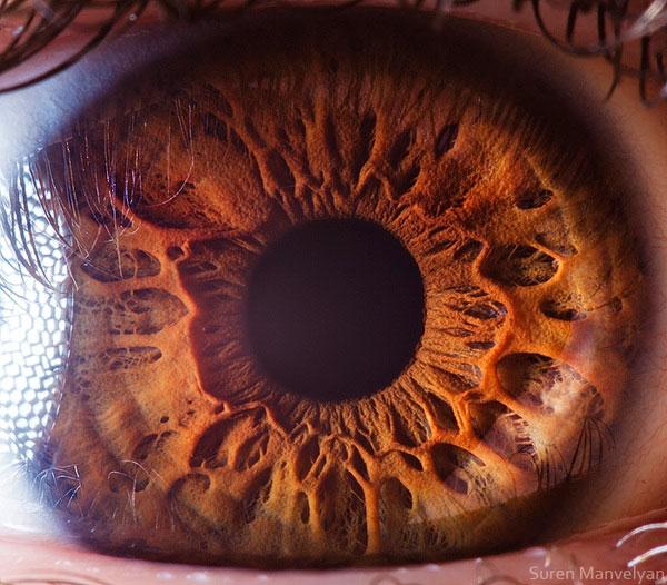 oeil-humain-gros-plan-14