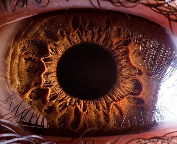 oeil-humain-gros-plan-16
