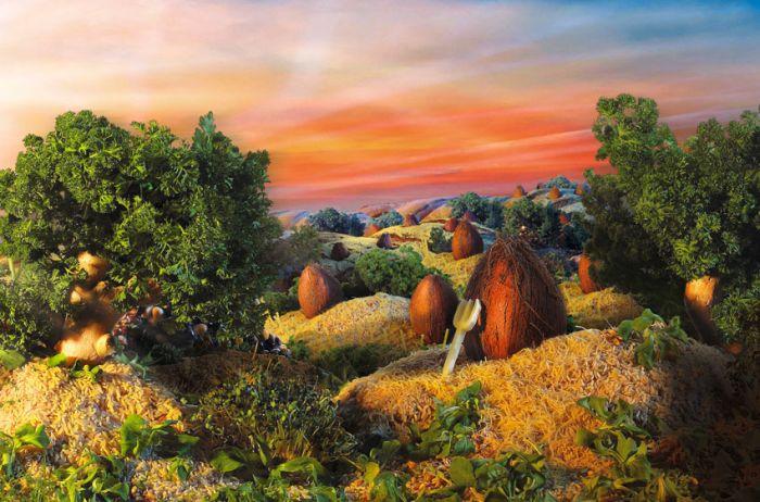 paysages-nourriture-06
