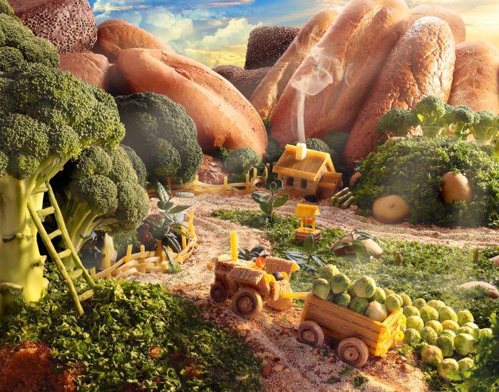 paysages-nourriture-08