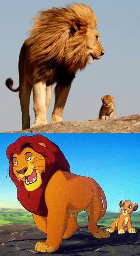 sosie-mufasa-simba-roi-lion