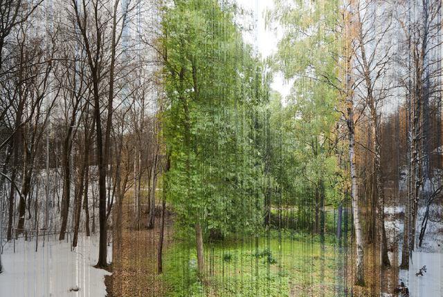 chaque-ligne-photo-represente-une-annee