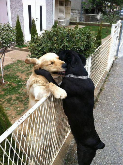 super-collier-baise-quand