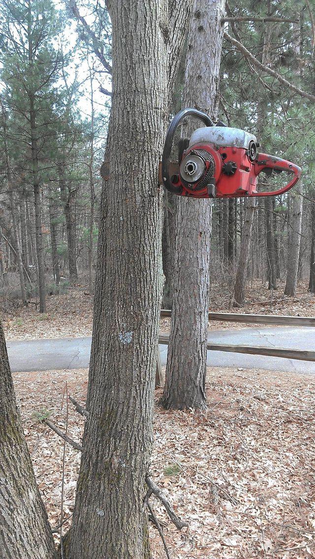 tronconneuse-bloquee-dans-arbre