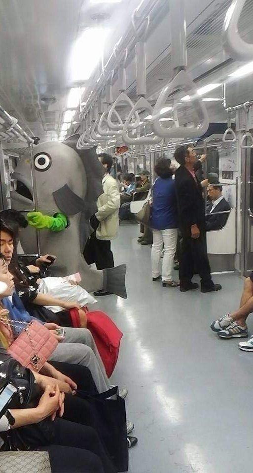 poisson-metro