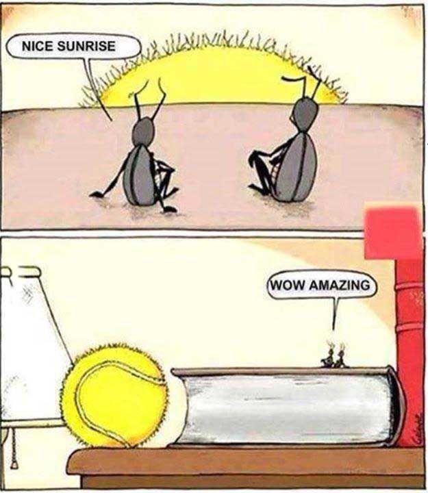 fourmis-lever-soleil