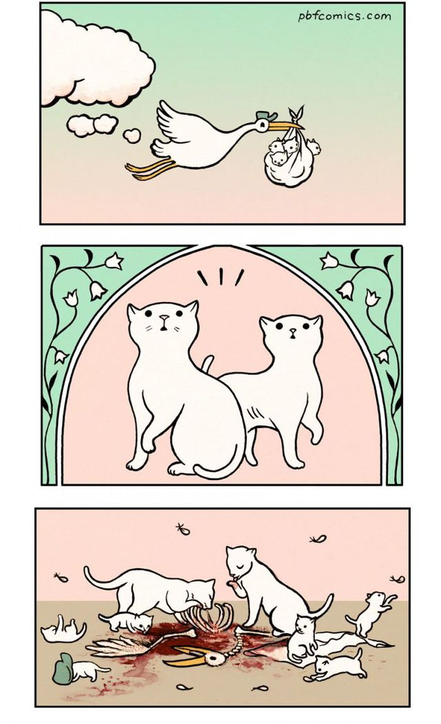 cigogne-chats