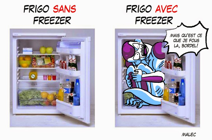 frigo avec freezer. Black Bedroom Furniture Sets. Home Design Ideas