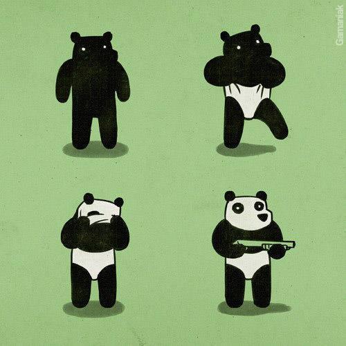 panda-cambrioleur