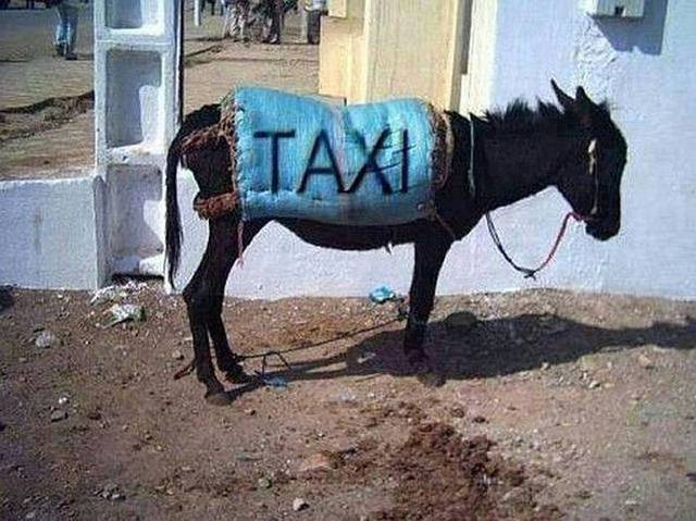ane-taxi-bled