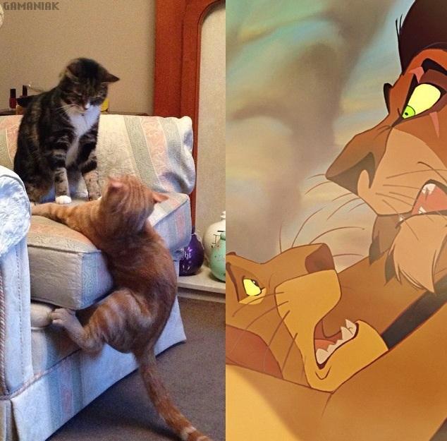2-chats-scene-scar-mufasa-roi-lion