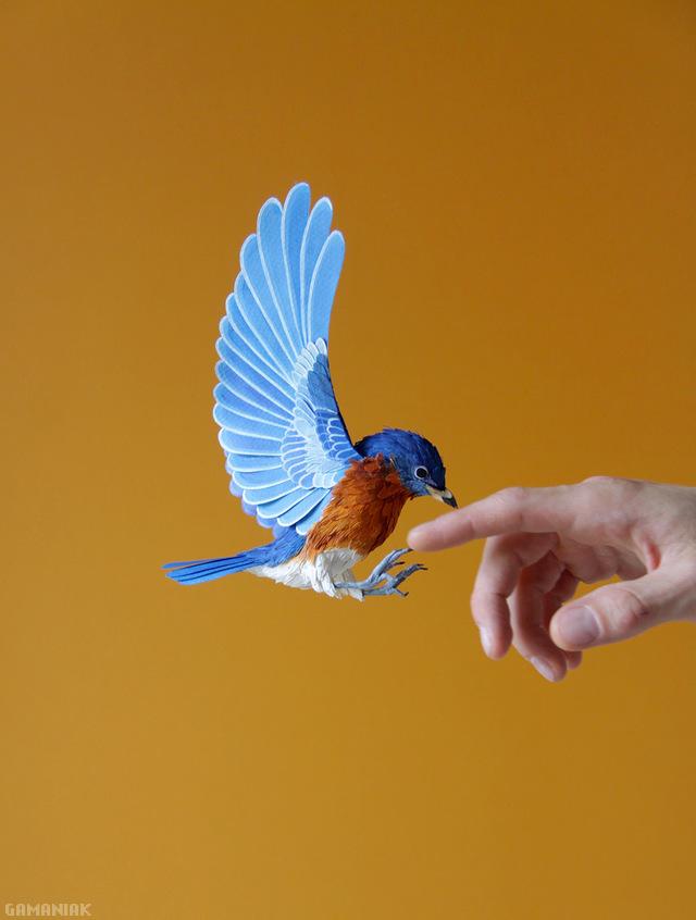 oiseau-fait-papier