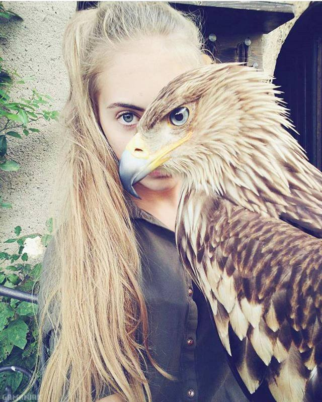 oeil-fille-oeil-aigle