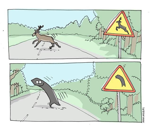 attention-cerfs-virage