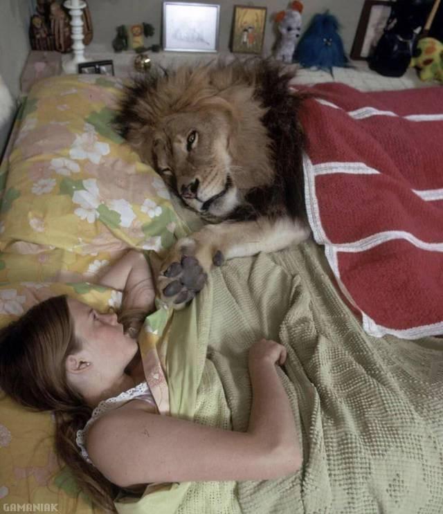 dormir-avec-lion-lit