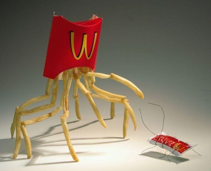 frites-macdo-insecte-araignee