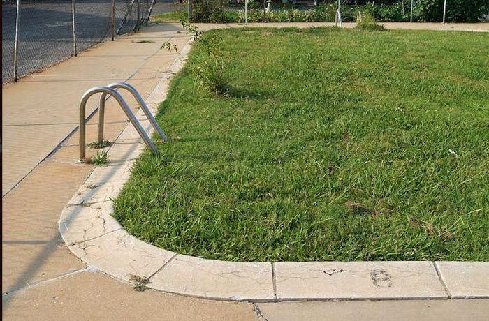 images-vrac-47-piscine-herbe