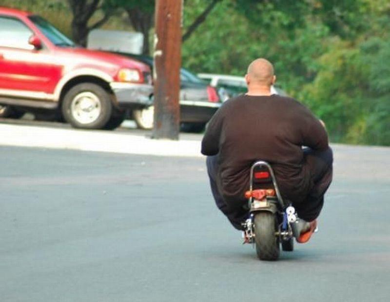 obese-mini-moto