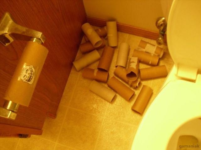 plus-papier-toilette
